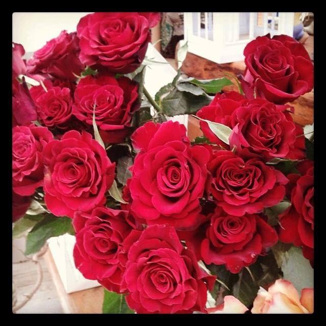 ROSE ROSSE !!! La Serra - Vedano al Lambro - Monza e Brianza. Fiori e Piante. Creazione di articoli da regalo, composizioni e addobbi floreali per matrimoni, anniversari, lauree ed onoranze funebri.