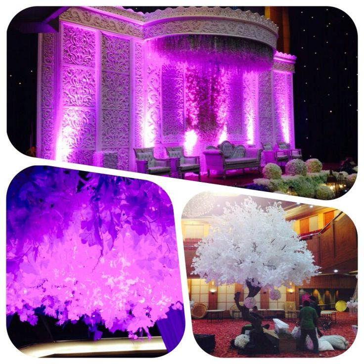 """New Trend Decoration """"White and shoot by LED Lamp"""""""