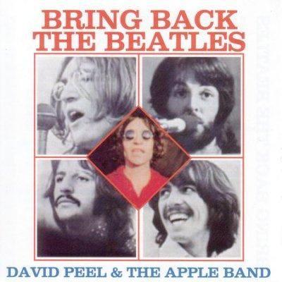 David Peel - Bring Back the Beatles