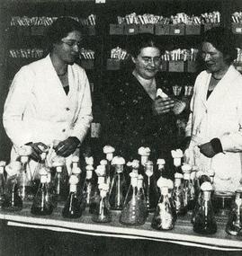 Johanna Westerdijk (1883-1961) hoogleraar plantenziektes aan de Universiteit Utrecht