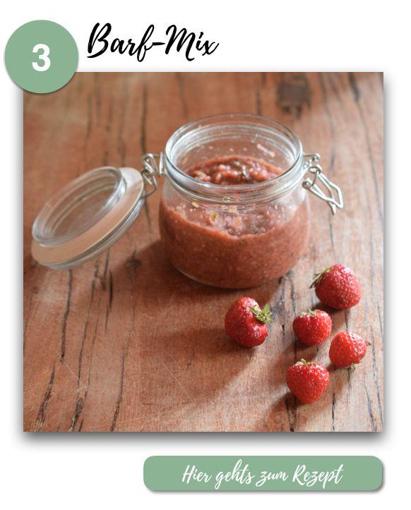 Hunde-Snacks selber machen // 5 einfache Rezepte mit Erdbeeren / BARF