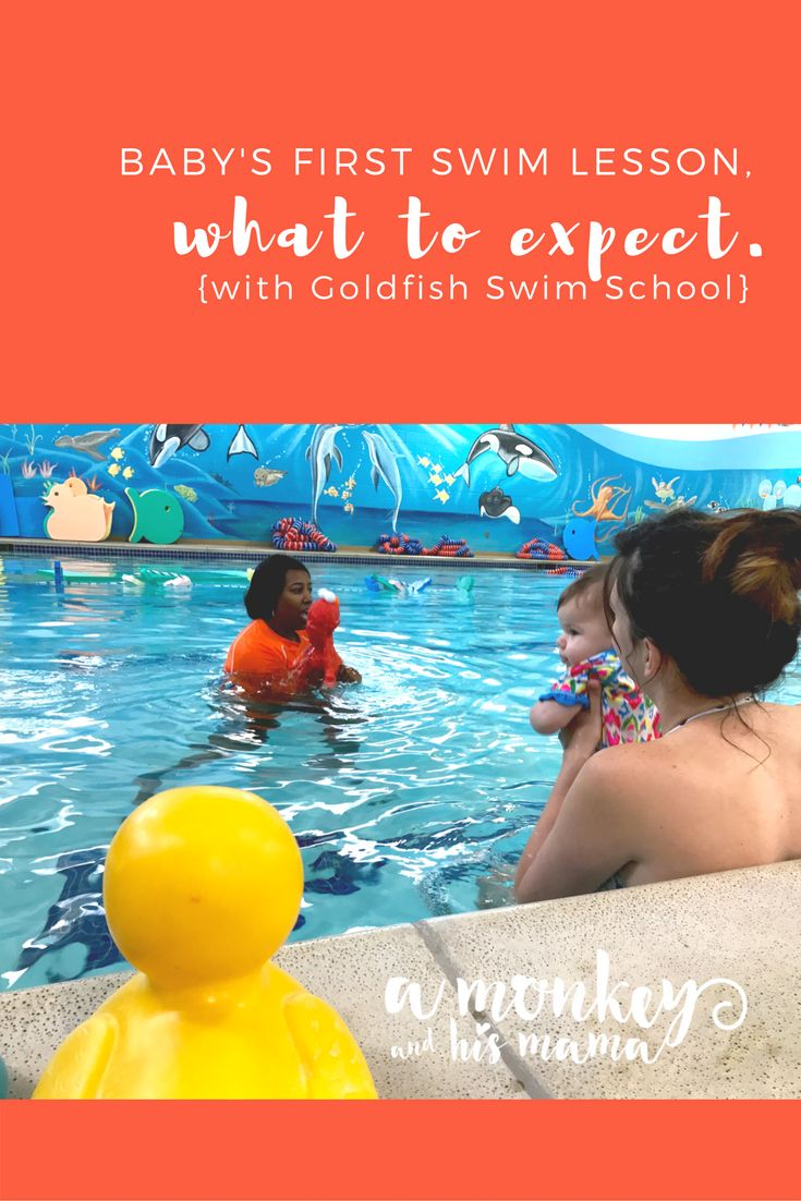 Best 25 Swim School Ideas On Pinterest Toddler Swimming Lessons Toddler Swimming Pool And
