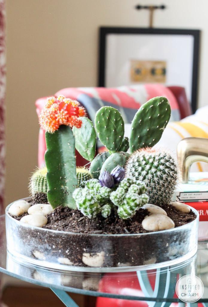 Small Cactus Garden Design cacti grouping resembles desert scene Tabletop Cactus Garden