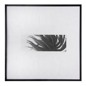 Tanja Hansen Framed Aloe (Design 1) R1199 -