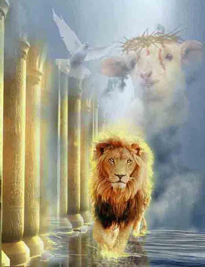 56 best Lion of Judah images on Pinterest | The lion, Big ...