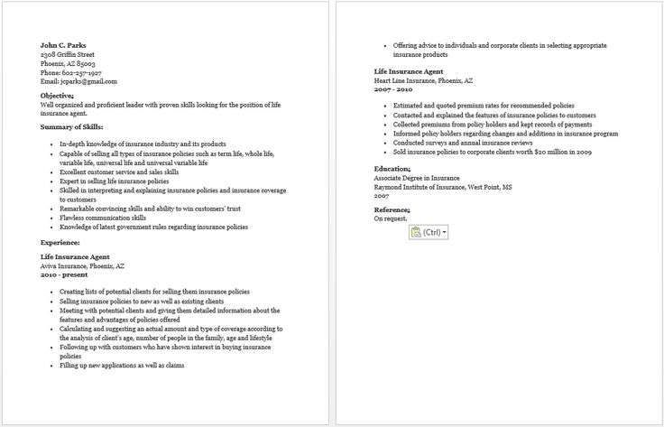 what to put in a cover letter insurance resume resume sample 1713