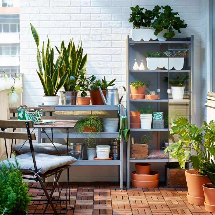 Ein schmaler Balkon mit HINDÖ Gewächshaus/Schrank und HINDÖ Regal in Grau und einem Klapptisch mit Klappstühlen. In den Regalen befinden sich viele Pflanzen.