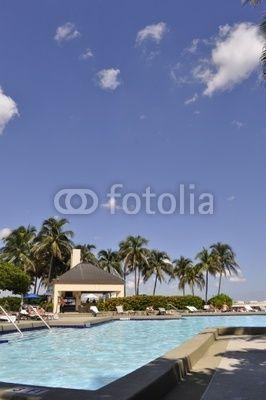 piscina tropici palme