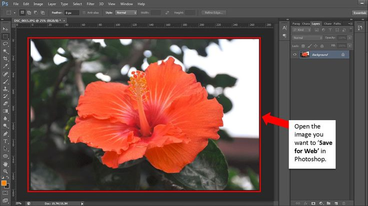 How to Save for Web in Photoshop