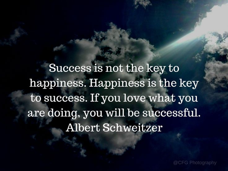 Success is not the key to happiness. Happiness is the key to success. If you love what you are doing, you will be successful. Albert Schweitzer https://photography.expoanunturi.ro/