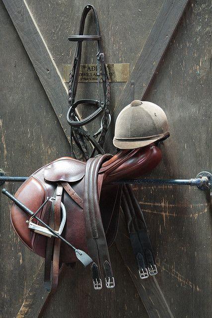ironsleathersandgirths:    IMG_9093 by payton adams on Flickr.