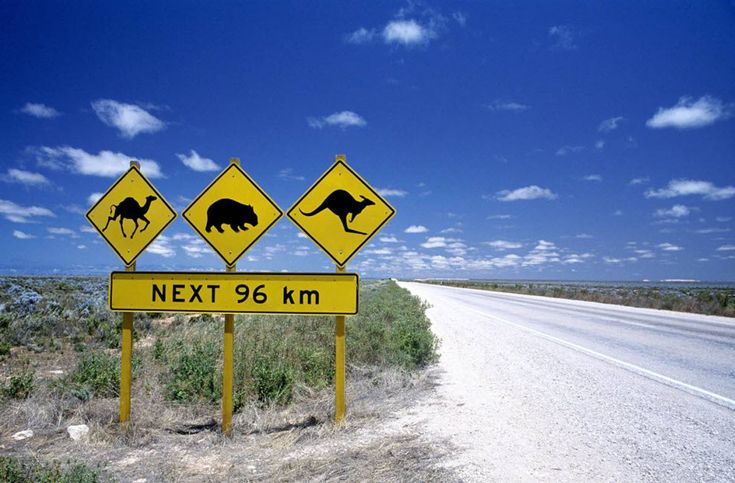 Jumbuck Springs is a small town of 2000 people a couple of hours west of Brisbane