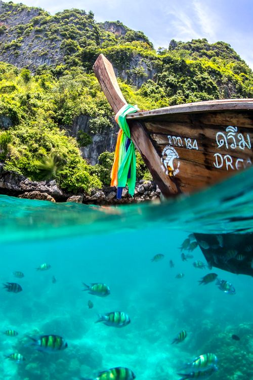 Whether it's adventure or sunbathing, it's got to be Koh #PhiPhi, Thailand. P.S. Seize the moment! http://phi-phi.com