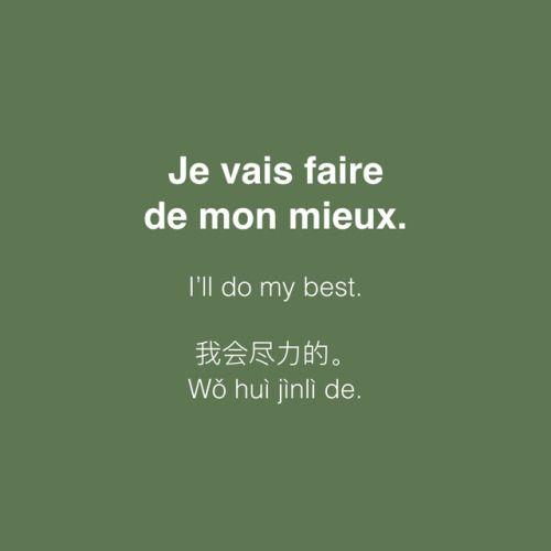 Je vais faire de mon mieux. • /ʒə vɛ fɛʁ də mɔ̃ mjø/ • I'll do my best. • 我会尽力的 • Wǒ huì jìnlì de.