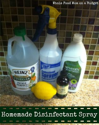 Homemade Lysol Disinfectant Spray Mix Together 16 Oz 2