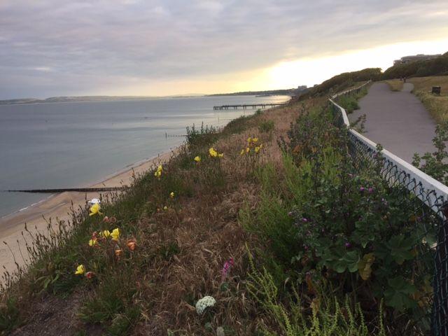 Clifftop walk to Boscombe Pier. Beautiful spot for an evening walk #sunsetbythesea