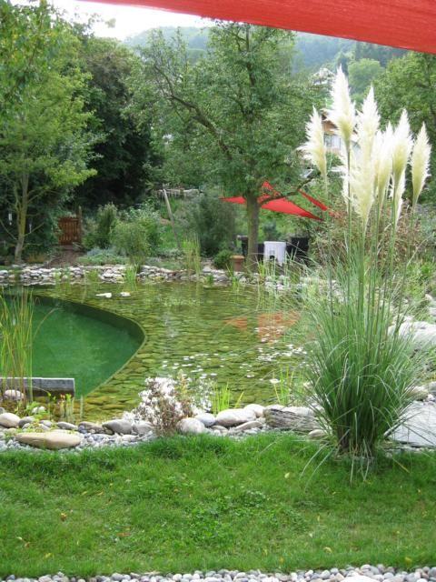 Schwimmteich biochemie natural pool schwimmteich for Schwimmteich natur