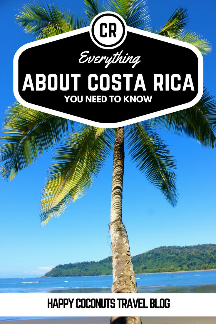 Everything you need to know before you trip to Costa Rica |  Everything to know about Costa Rica |  Travel to Costa Rica |  Activities in Costa Rica |  Things to do in Costa Rica |  Vacation in Costa Rica |  Etiquette in Costa Rica |  Vocabulary of Costa Rica |  Sayings of Costa Rica |  Costa Rica phrases |  Rent a car in Costa Rica |  Exchanging money in Costa Rica |  Airports in Costa Rica |