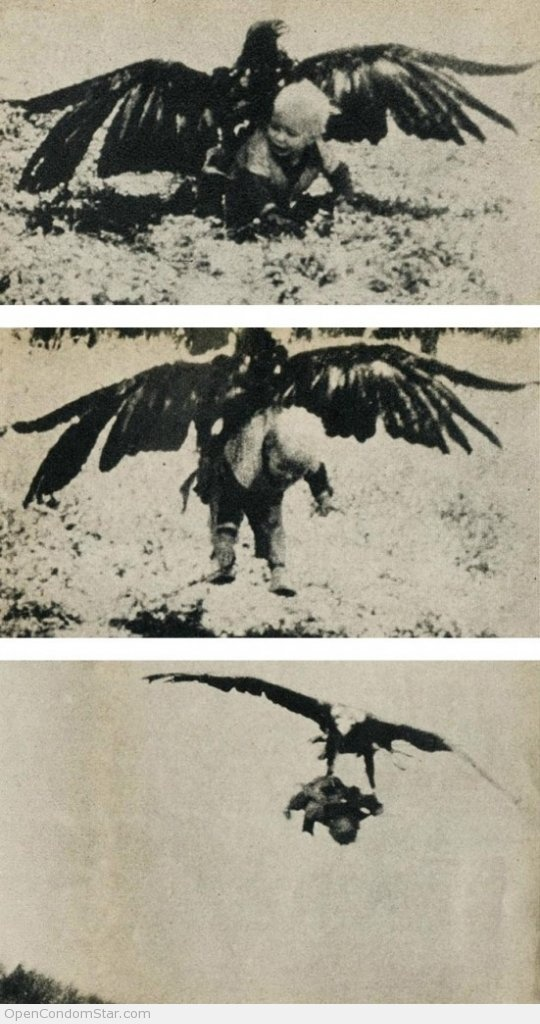 Beware of the Eagles