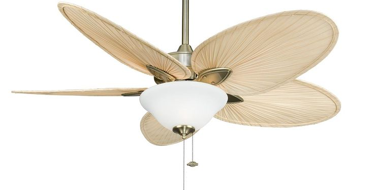 The Islander ceiling fan is one of Fanimation's classic designs that have withstood the test of time. For over thirty years, the natural elegance and versatility of this tropically inspired ceiling fan have contributed to its undiminished popularity. Picture here in Antique Brass with Narrow Natural Palm Blades and a Frosted White Glass.