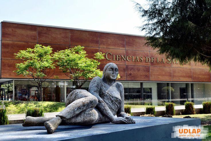#CienciasDeLaSalud #Escultura #ColeccionDeArte