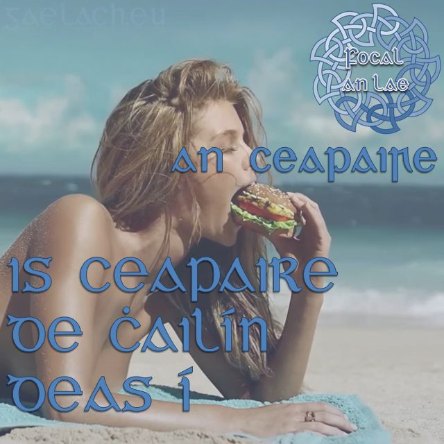 Is ceapaire de chailín deas í. (She is a nice shapely girl)