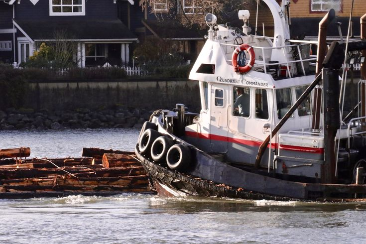 """Quandrant Towing's tugboat """"Quadrant Commander"""" guiding a log boom in the North Arm of the Fraser River. Click image to enlarge."""