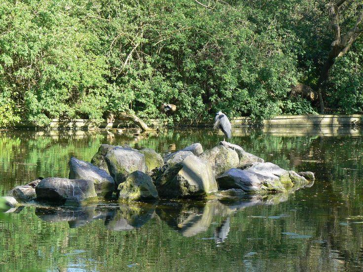 Brookmill Park itt: Deptford, Greater London