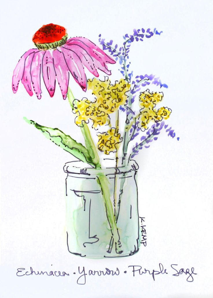 Purple Coneflower (Echinacea), Yarrow, and Purple Sage in Glass Jar - Original Watercolor and Ink on Yupo Paper. $16.00, via Etsy.