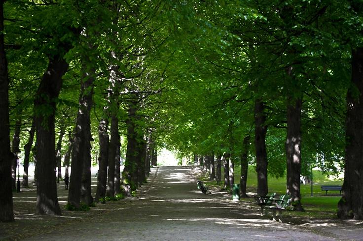 Stockholm, Sweden: Humlegården