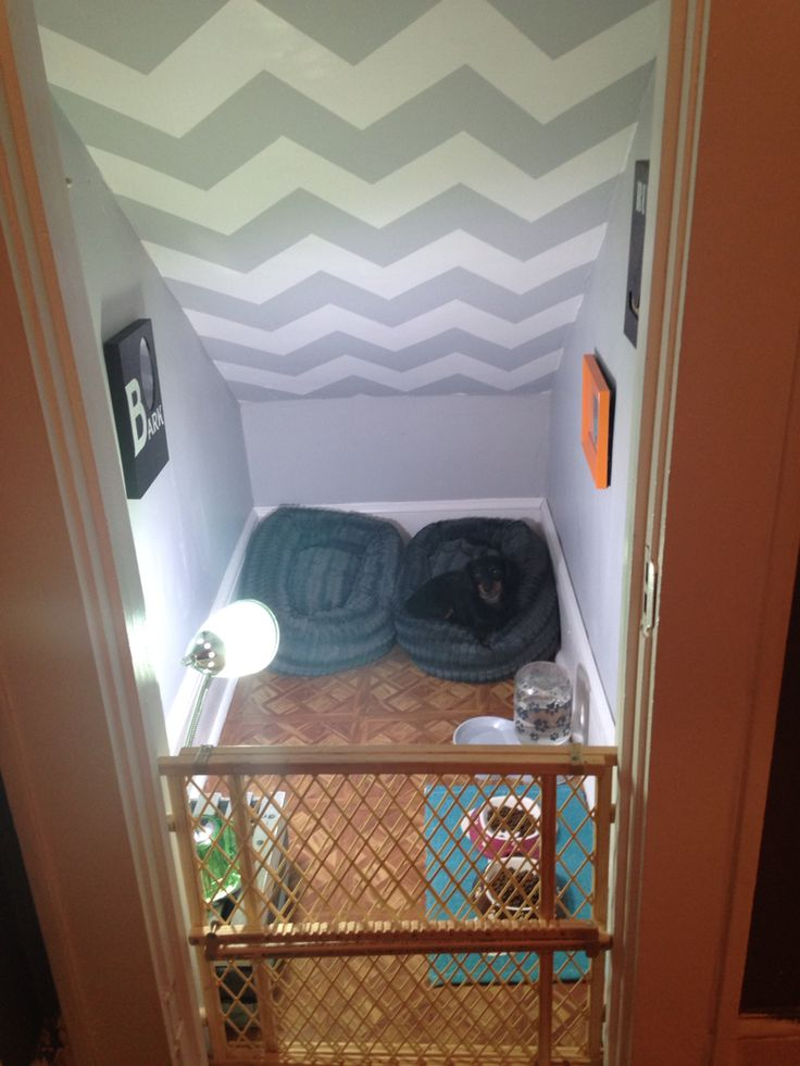 Dog room! Making use of a never used closet under the stairs!