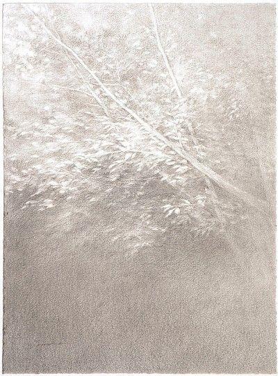 Shigeki Tomura : Reflected on Trees XII at Davidson Galleries