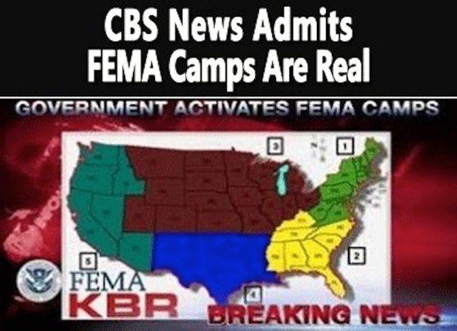 119 best FEMA  - fema application form