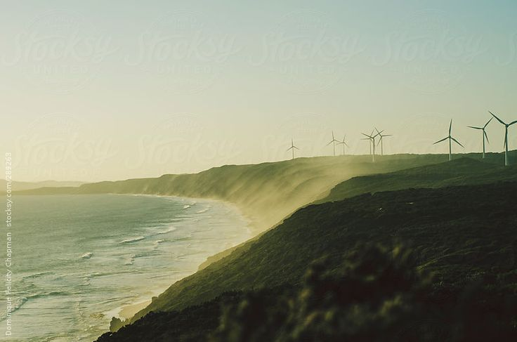 Shoreline with wind turbines by DominiqueFelicityPhotography | Stocksy United
