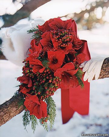 winter red bouquet
