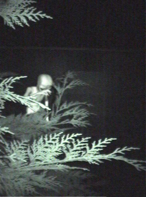 x: Foto Ufo, Aliens Sight, Ufos, Ufo Sight, Aliens And Ufo, Area 51, Real Photos, Aliens Visitor, Grey Aliens