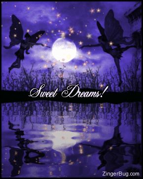 """Cool Pics of Night Fairies 