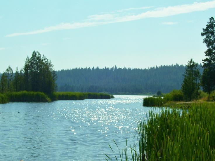 1533 best idaho images on pinterest idaho beautiful for Cascade lake idaho fishing