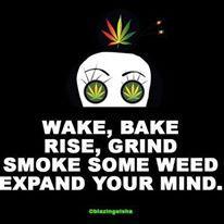 (18) Cannabis Training University