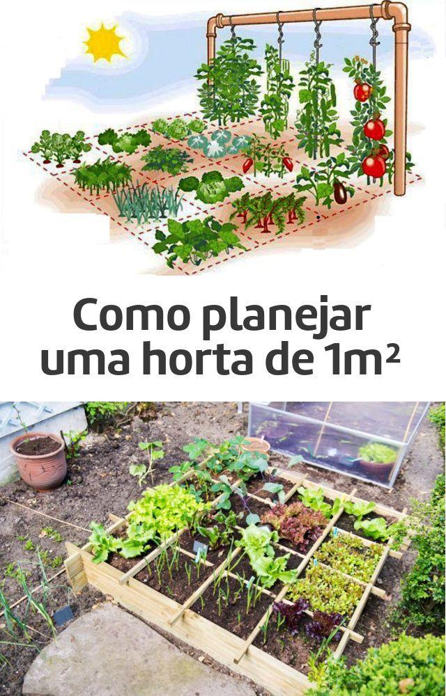 Como planejar uma horta de um metro quadrado