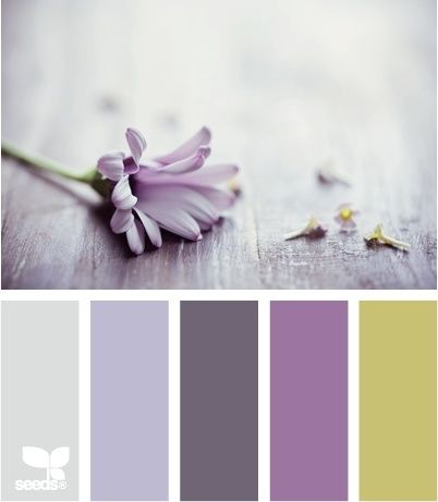 12 best images about girls room on pinterest purple rooms trendy bedroom and thistles - Purple and silver color scheme ...