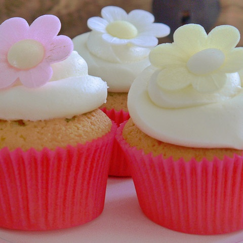 Blooming marvellous cup cakes.