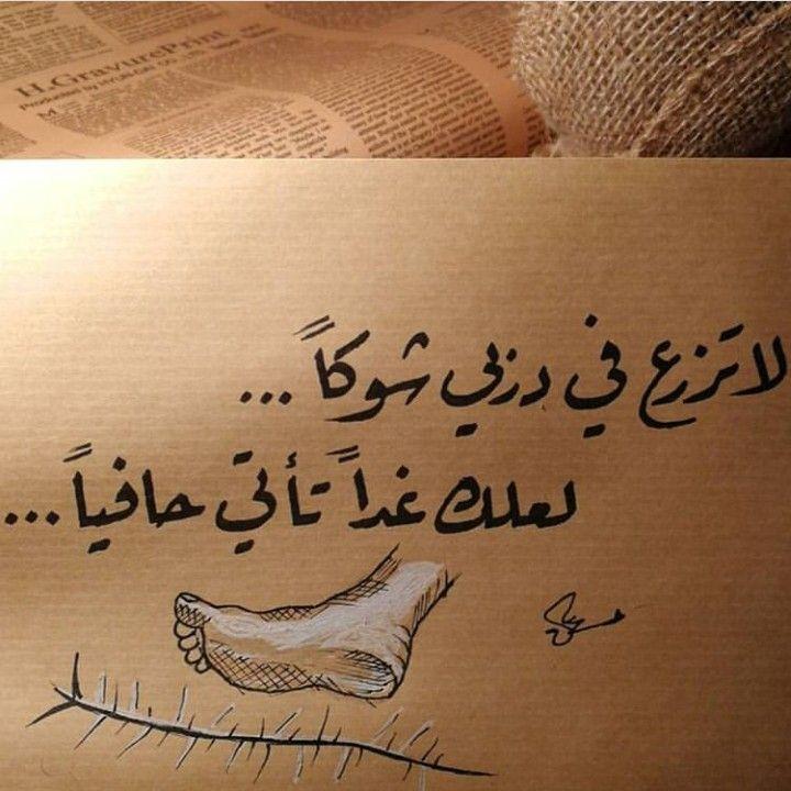 لا تزرع الشوك Words Quotes Arabic Quotes Love Words