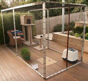 Cat Stuff Cat Enclosures Courtyard