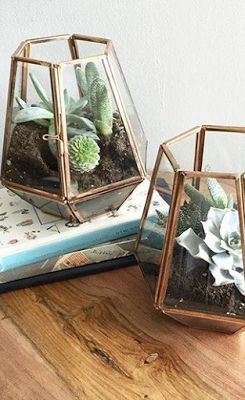 Currently looking for the perfect terrarium pots | PartoftheKULT.com