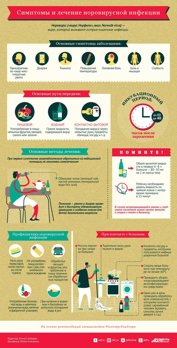 Симптомы и лечение норовирусной инфекции. Инфографика | Инфографика | Вопрос-Ответ | Аргументы и Факты