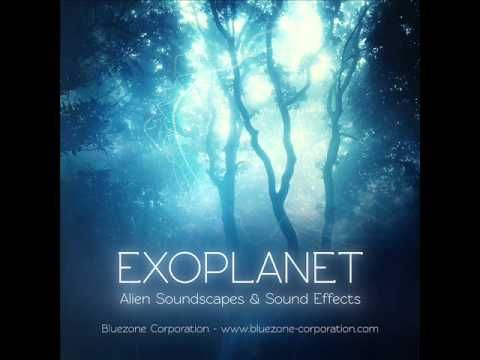 Forest Ambience Sounds, Sci Fi Insect and Fantasy Creature Sound Effects...