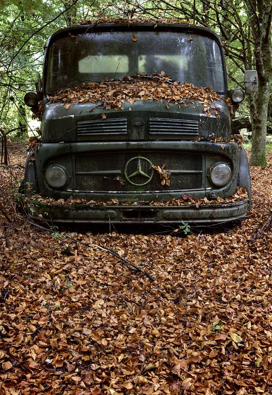 An old broken down Mercedes truck sits among the fallen Autumn leaves at a vehicle graveyard in Belgium.