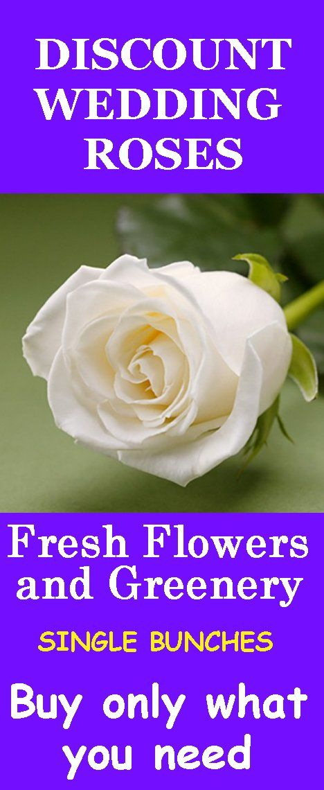 17 Best Images About White Rose Wedding Flowers On Pinterest