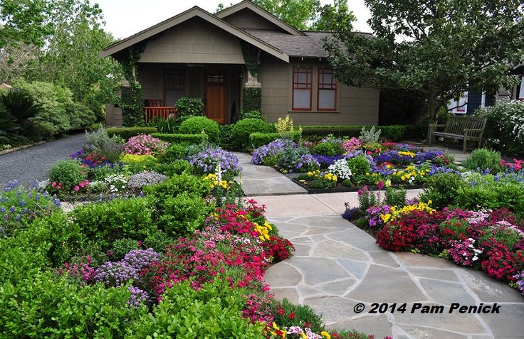 Drive-By Gardens: No-lawn flower garden at Houston Heights bungalow | Digging. Click through for more pics.